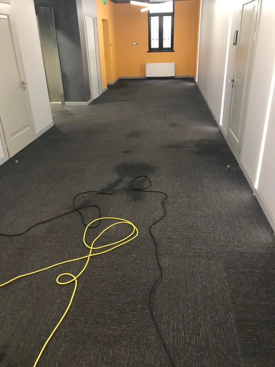 Химчистка ковров и ковролина